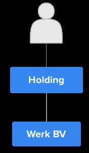 holding, werk bv